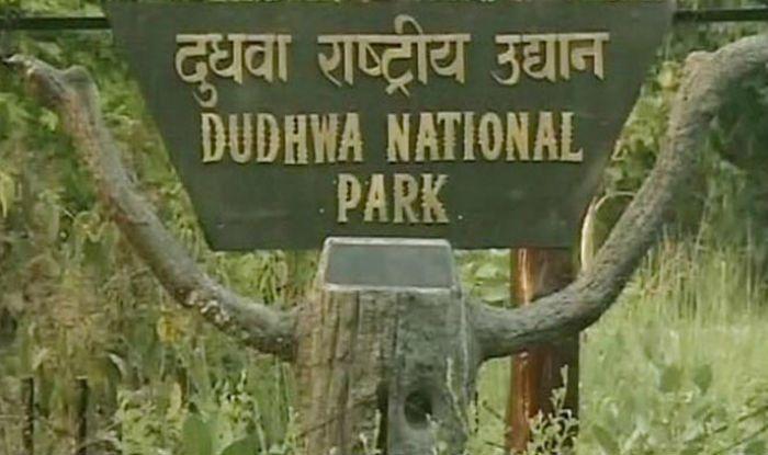 دودھوا نیشنل پارک کا دروازہ سیاحوں کے لئے کھول دیا گیا